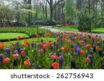 Keukenhof Garden  Netherlands ...