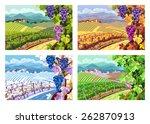 Rural Landscape With Vineyard...