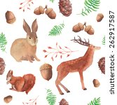 watercolor forest wildlife... | Shutterstock .eps vector #262917587