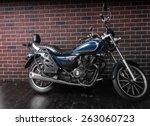 full length profile of blue...   Shutterstock . vector #263060723