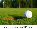 golf course | Shutterstock . vector #263061953