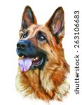 drawing of the dog german... | Shutterstock . vector #263106683