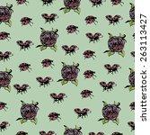 bugs background pattern design... | Shutterstock .eps vector #263113427