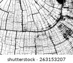 Crack Vector Texture