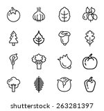 vegetables and fruits icons... | Shutterstock .eps vector #263281397