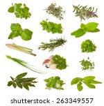 various kind of fresh herbs... | Shutterstock . vector #263349557