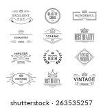 retro vintage insignias or... | Shutterstock .eps vector #263535257