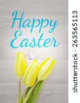 happy easter against three...   Shutterstock . vector #263565113