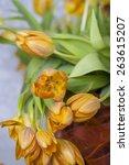 yellow tulips . elegant design... | Shutterstock . vector #263615207