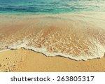 serenity beach | Shutterstock . vector #263805317