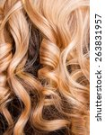 strand of curly blond hair on... | Shutterstock . vector #263831957