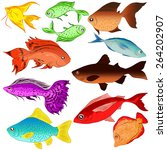images of fish | Shutterstock .eps vector #264202907