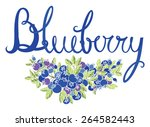 blueberry calligraphy card | Shutterstock .eps vector #264582443