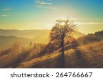 Mountain Autumn Landscape With...