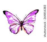 butterflies design | Shutterstock . vector #264816383