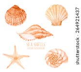 vector watercolor sea shells.... | Shutterstock .eps vector #264921437