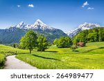 idyllic summer landscape in the ... | Shutterstock . vector #264989477