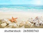 shells on the beach.   Shutterstock . vector #265000763