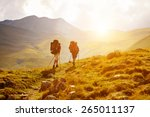 Hikers On The Trail In The...