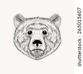 sketch realistic face bear.... | Shutterstock .eps vector #265015607