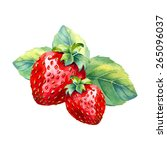 vector watercolor strawberry... | Shutterstock .eps vector #265096037