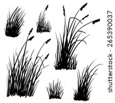 set of hand drawn beach grass.... | Shutterstock .eps vector #265390037