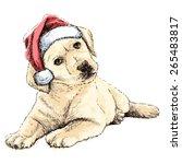 labrador retriever with santa... | Shutterstock .eps vector #265483817