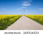 Rapeseed Flower Landscape And...