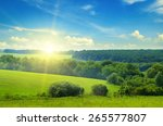 Green Field And Blue Sky With...