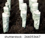 growth concept  growing dollar... | Shutterstock . vector #266053667