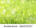 grass with bright sunlight | Shutterstock . vector #266151317