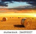 Straw Bales On Farmland At...