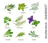 set of vector herbs.  isolated... | Shutterstock .eps vector #266483657
