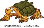 Angry Snapping Turtle. Vector...