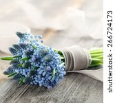 Bouquet Of Blue Muscari Flowers