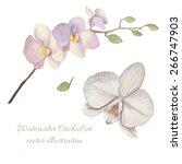 watercolor orchid flowers set.... | Shutterstock .eps vector #266747903