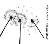 black vector dandelions | Shutterstock .eps vector #266779517