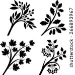 branches | Shutterstock .eps vector #266893967