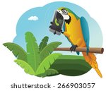vivid parrot is sitting on the...   Shutterstock .eps vector #266903057