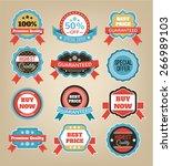 vector vintage badges  stickers ... | Shutterstock .eps vector #266989103