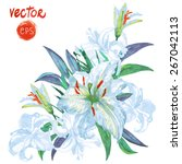 vector flower white lily.... | Shutterstock .eps vector #267042113