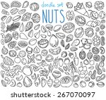 different kinds of nuts. set of ... | Shutterstock .eps vector #267070097