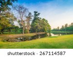 green lawn in city park with... | Shutterstock . vector #267114587