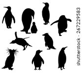 Set Of The Penguins Silhouette...
