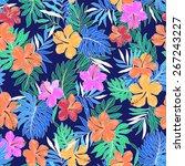 pattern of hibiscus | Shutterstock .eps vector #267243227