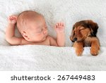 Newborn Baby And A Dachshund...