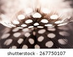 Abstract Composition With...