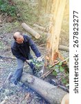Small photo of Lumberjack logger worker cutting firewood timber tree in forest with chainsaw in mountain.