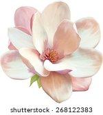 vector illustration of... | Shutterstock .eps vector #268122383