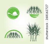 sugar cane  | Shutterstock .eps vector #268162727